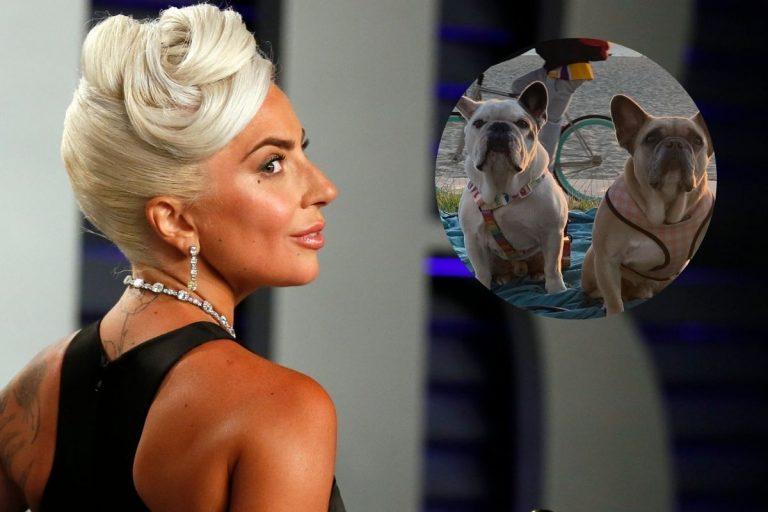 Lady Gaga recupera a los dos perros que le habían robado